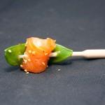 pipette-saumon